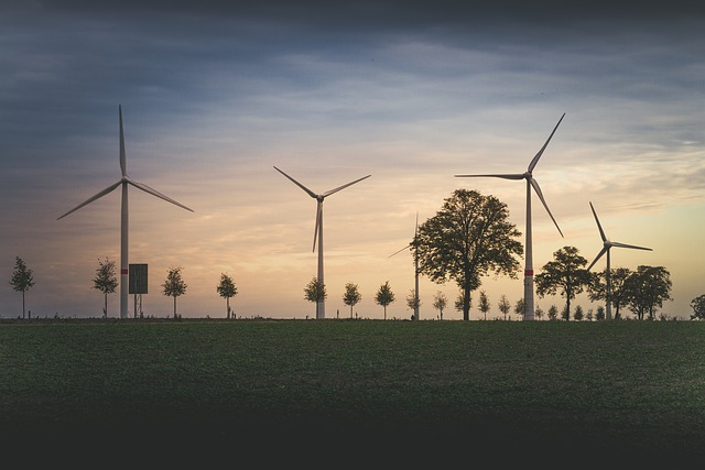 Wind Turbine with Trees